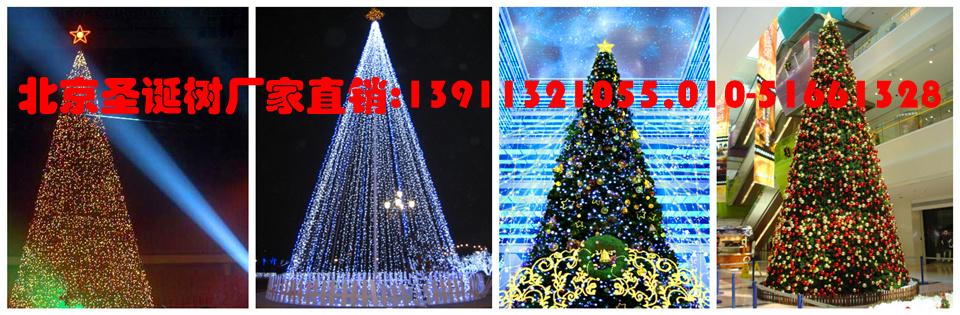 北京圣诞树厂