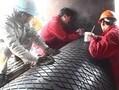 冷硫化滚筒包胶技术