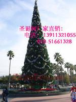 电力公司的大型圣诞树